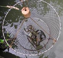 La pêche dans le domaine de Moscou selon la chaussée dIaroslavl